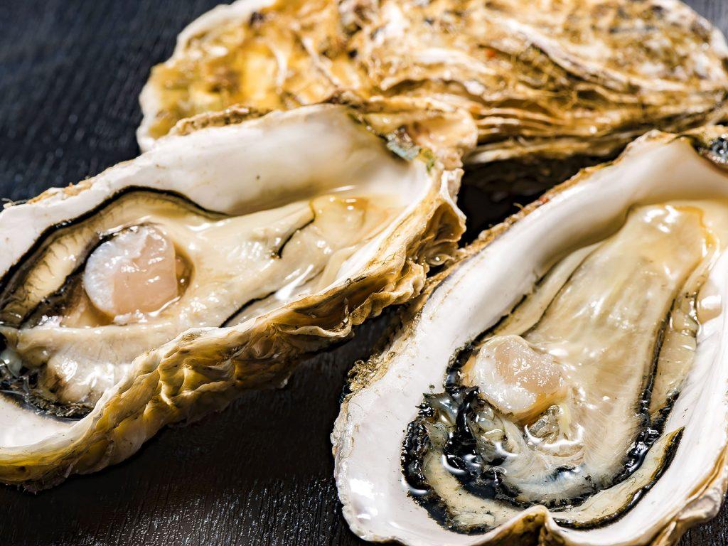 海の完全栄養食「牡蠣(カキ)」