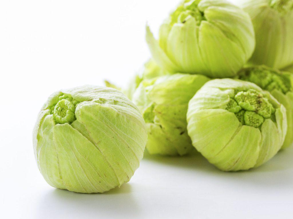 オススメのデトックス春野菜:ふきのとう