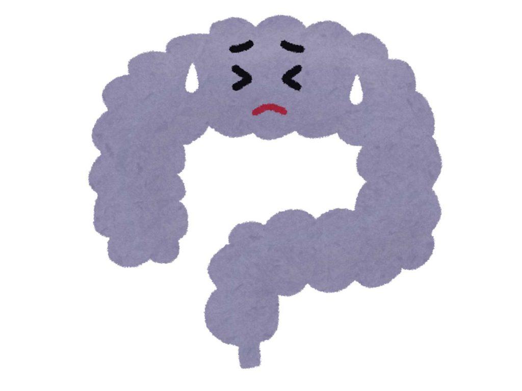 食中毒になりやすいタイプ:腸内環境が悪い