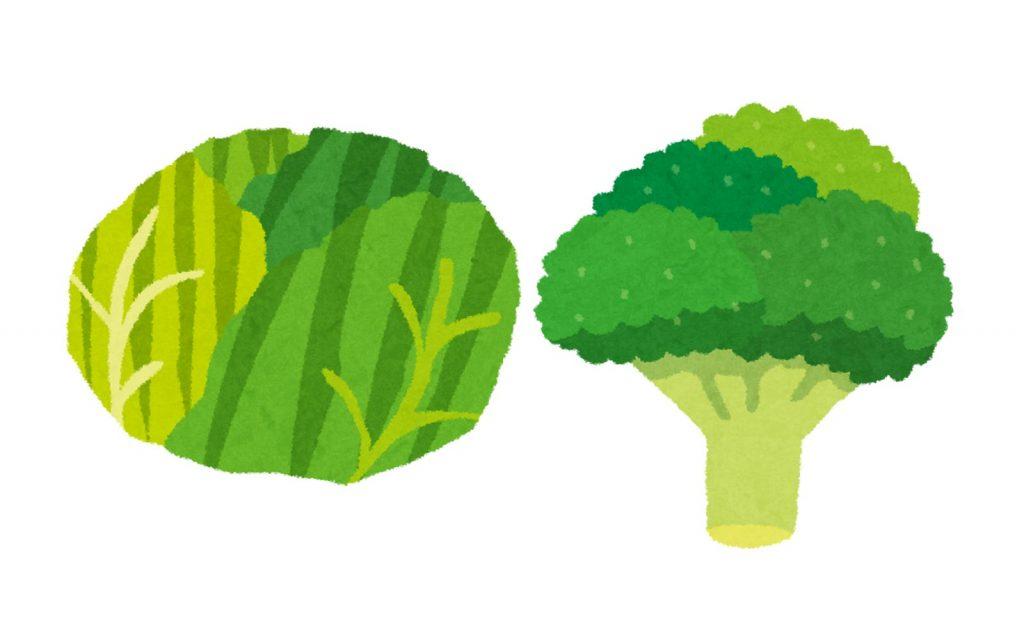 悪玉コレステロール対策にオススメの野菜は?