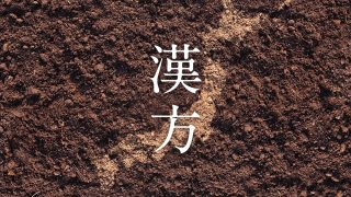 日本で生まれた「漢方」という考え方
