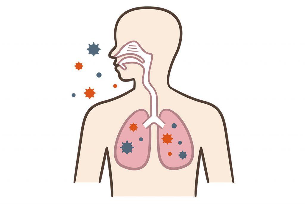 熱が下がってもウイルスは体内に残っている